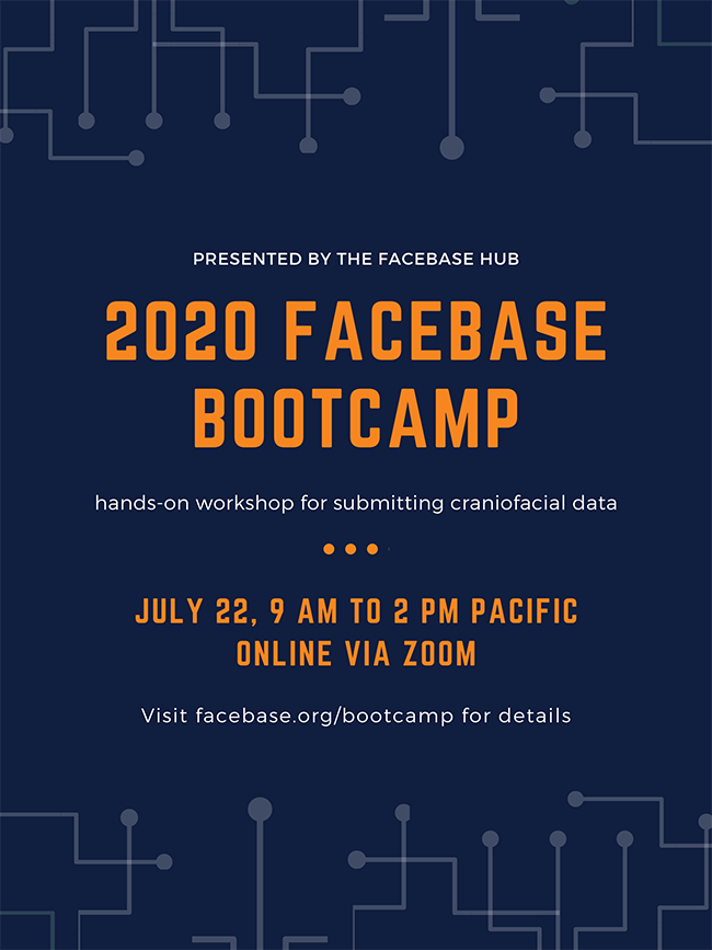 Flyer for Bootcamp
